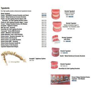 Modele si typodonti